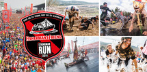 Strongman Run 2015