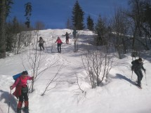 Gentle hike or snowshoe on Mount Salève Picture