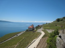 Vevey - Lavaux - Early Hike to beat the rain