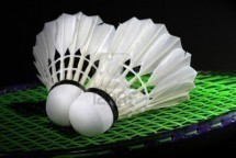 Badminton & Drinks - All levels