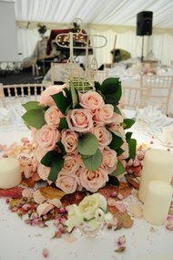 Infinite Weddings - Your Perfect Wedding & Event Planner Picture
