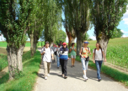 Geneva Weekday Walking Group Picture