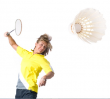 Badminton Picture