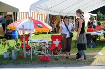 Volunteer at Dancing Festival in the Emmental