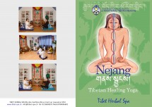free One hour workshop on Tibetan Yoga and meditation Picture