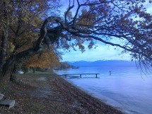 Hike Allaman to Morges Picture