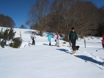 Snowshoeing on Mount Salève Picture