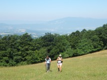 Hike on Mt Salève - The path of